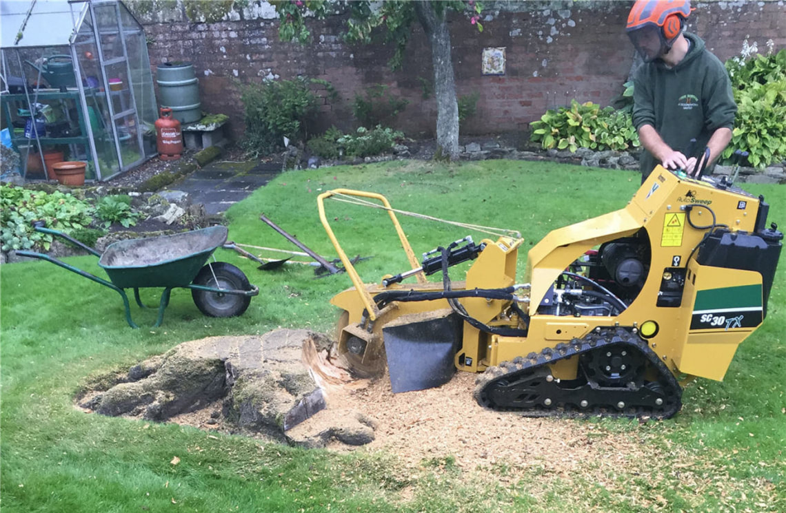 stump-grinding-Stockport